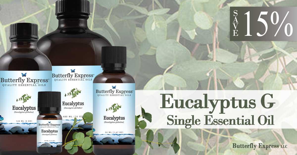 Save 15% on Eucalyptus G